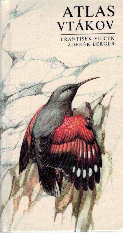 pic z tvrdej vtáky